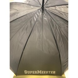 Grote Paraplu Grijs